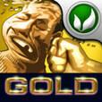 FaceFighter Gold