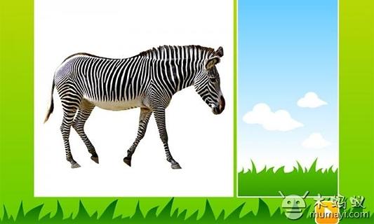 儿童简单动物马剪纸步骤图片