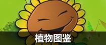 图鉴大全-植物篇