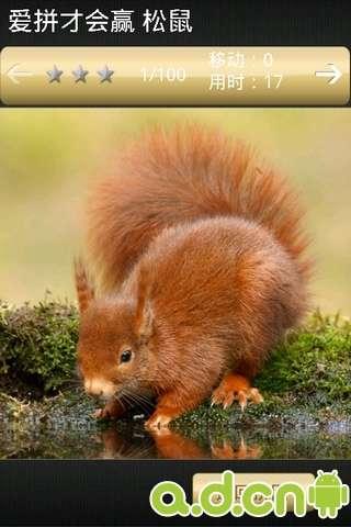 快来欣赏这些可爱小动物的百态吧!