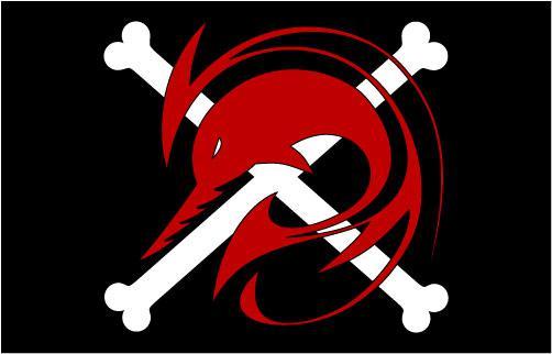 【启航!在信念的旗帜带领下】恶龙海贼团