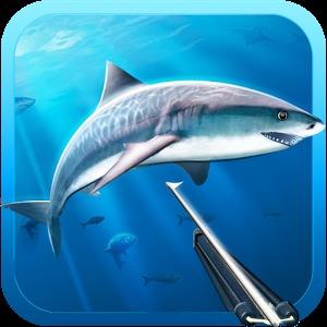 海底里面的动物
