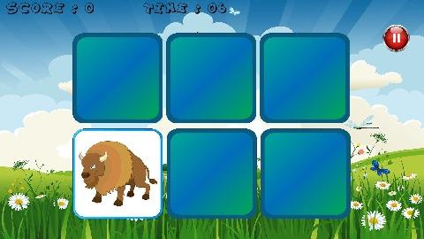 动物的记忆游戏