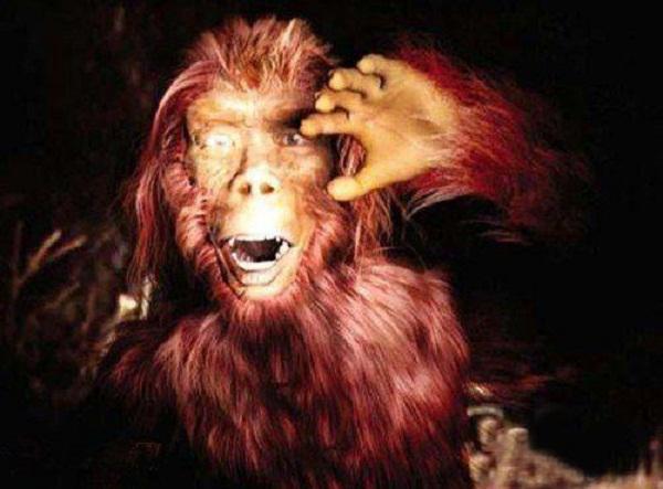 《热血学院》美术站——森林场景怪物设定