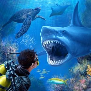 幼儿园布置图片主题墙海底鲨鱼