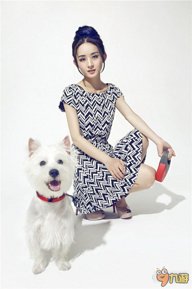 国民甜心赵丽颖可爱写真图片 猫咪狗狗搭档拍照