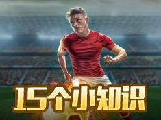 《足球大师黄金一代》之游戏内15个小知识