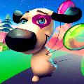小狗冠军赛跑