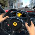 驾车 Driving Car 2016