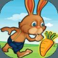 兔子农场冒险