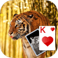Solitaire Tiger Theme