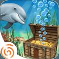 加勒比海豚寻宝