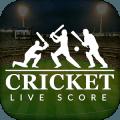 Cricket Live Score : IPL & T20