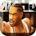 Boxing Fighting Def Jam NY