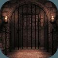 Can You Escape Castle Prison