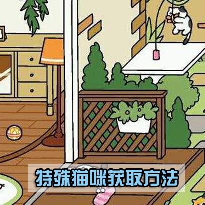 猫咪后院特殊猫怎么得 特殊猫获得方法