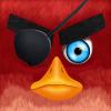 Angry Bird Defend :bird defend