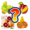 Fruits Name Guess Quiz Game