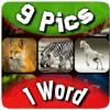 9 Pics 1 Word