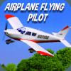 Airplane Flying Pilot Flight Plane Drive 2019