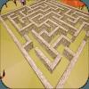 Cute Maze 3D - Fox escape adventure in labirinth