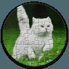 Jigsaw Image Puzzle