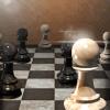 Chess master for beginners