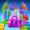 Brick Puzzle Game©DNG