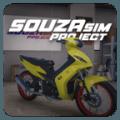 SouzaSim Project