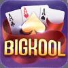 Bigkool 2019