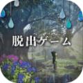 少女と雨の森