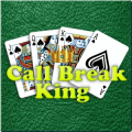 Call Break King