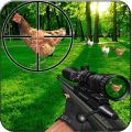 Chicken Shoot : 3D sniper Murgi Shooter