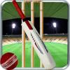IPL T20 Slider Cricket 2018