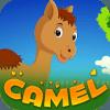 Best Escape Game - Cartoon Camel Rescue Game