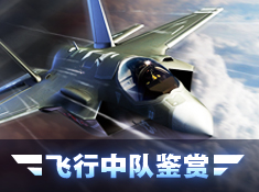 《钢铁战鹰》飞行中队鉴赏