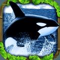 虎鲸模拟(免费版)