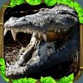 鳄鱼模拟(免费版)