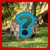 Quiz: Animals