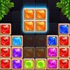 Puzzle Block Diamond Master