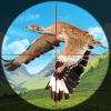 Taloor Hunter Birds Hunting