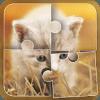 Cute Cat Jigsaw Puzzle