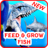 Feed and Grow : Fish Adventure