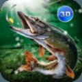 3D真实钓鱼