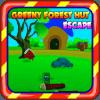 Escape Games 2019  Green Forest Hut