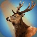 鹿野生狩猎冒险