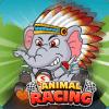 Animals Racing Track