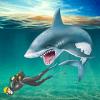 HUNGRY SHARK SIMULATOR ATTACK