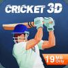 Cricket Lite 3D RealTime Multiplayer