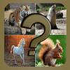 Adivinanzas de Animales Quiz Juego Gratis